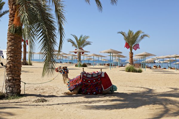 Egypt: The Three Corners Sunny Beach Resort 4*