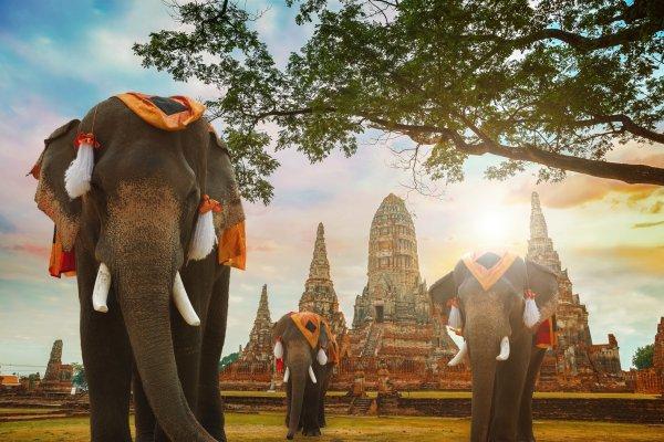 TOP zážitky z Thajského kráľovstva
