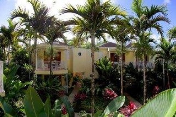 Negril Palms