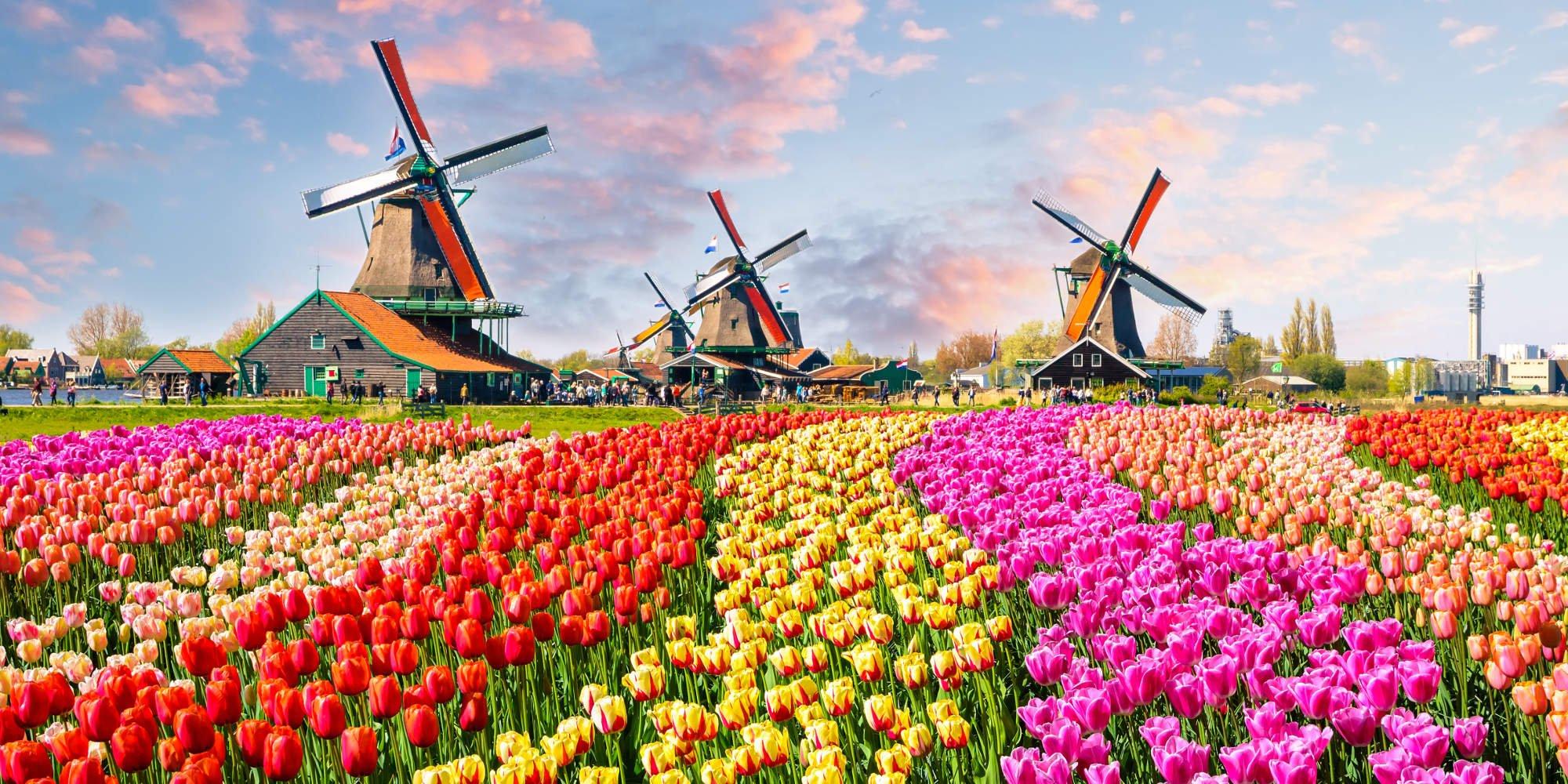 Holandsko - Základné cestovateľské informácie   Dovolenka SME