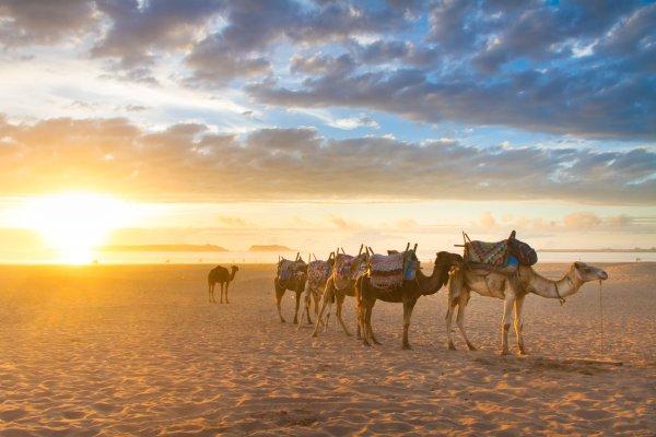 Marakéš a Agadir: TOP kombinácia Maroka