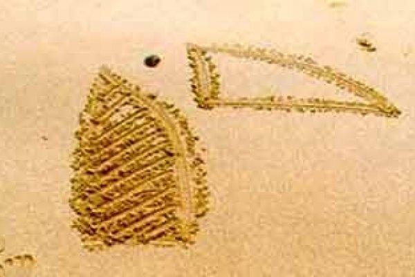 Abba Playa Gijon