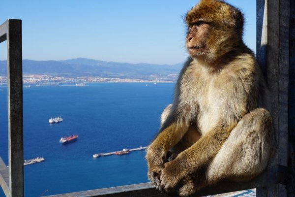 Cesta 3 krajinami: Španielsko, Gibraltár a Maroko