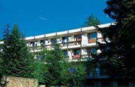 Hotel Puldin recenzie