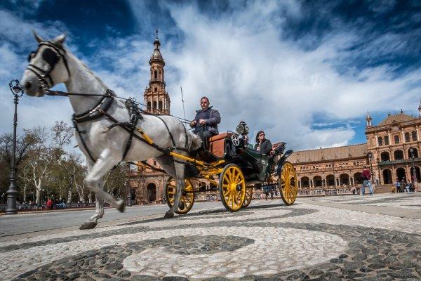 Klenoty Andalúzie: Sevilla, Cordoba, Granada, Alhambra