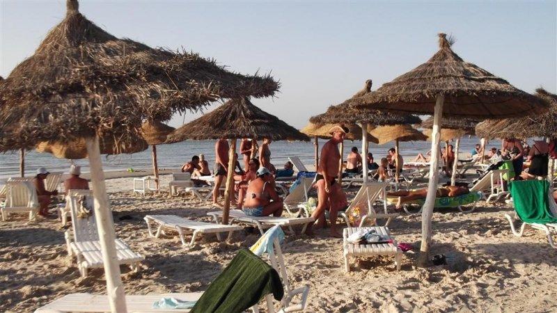 Palmyra Golden Beach